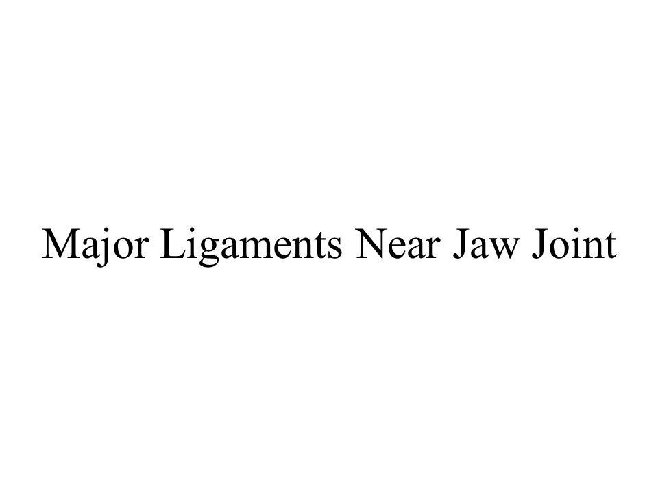 Major Ligaments Near Jaw Joint