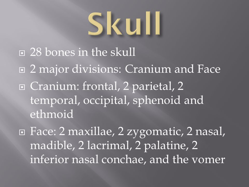 Skull 28 bones in the skull 2 major divisions: Cranium and Face
