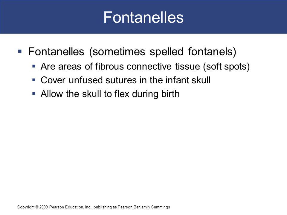 Fontanelles Fontanelles (sometimes spelled fontanels)