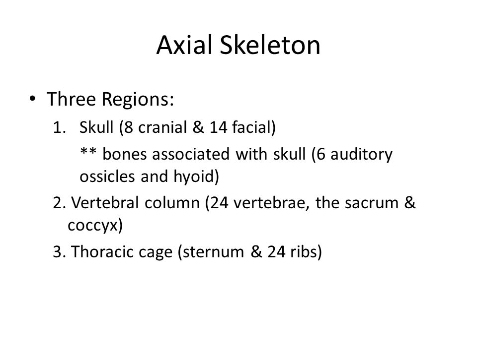 Axial Skeleton Three Regions: Skull (8 cranial & 14 facial)