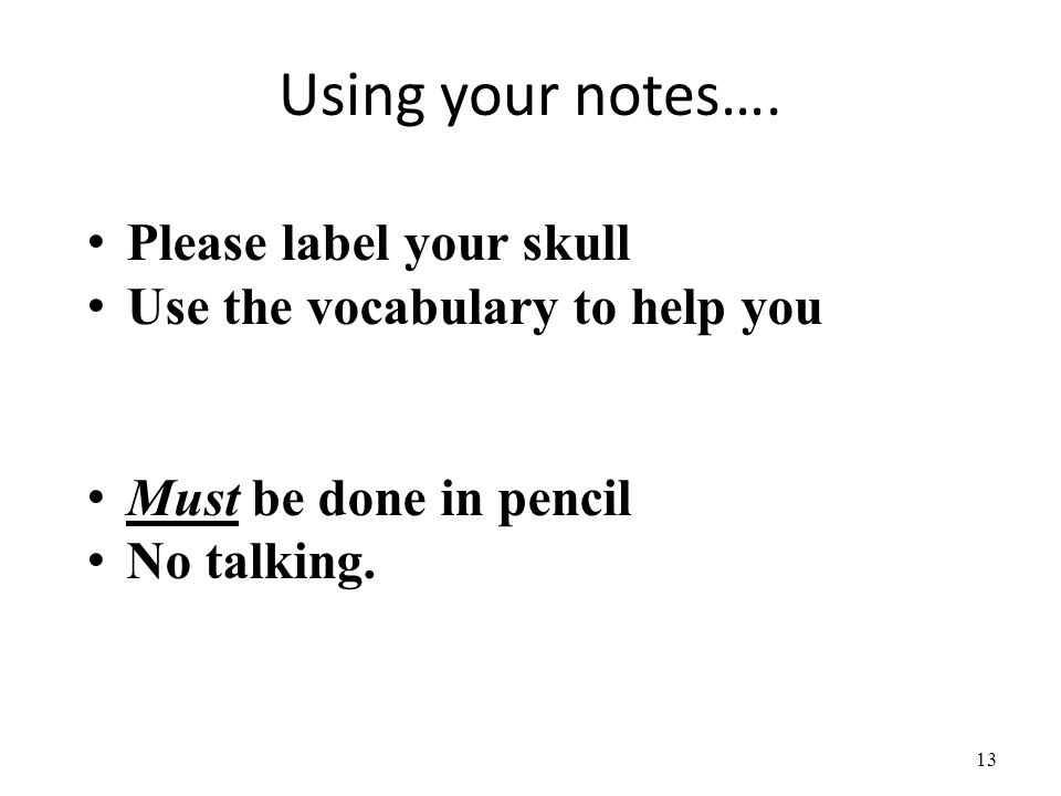 Using your notes…. Please label your skull