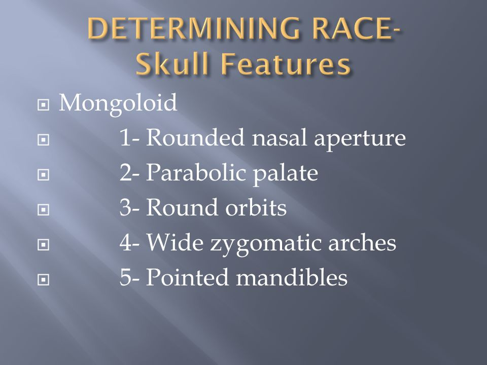 DETERMINING RACE- Skull Features