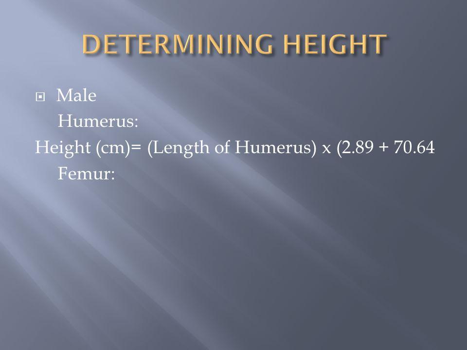 DETERMINING HEIGHT Male Humerus: