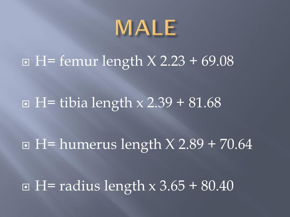 MALE H= femur length X 2.23 + 69.08 H= tibia length x 2.39 + 81.68