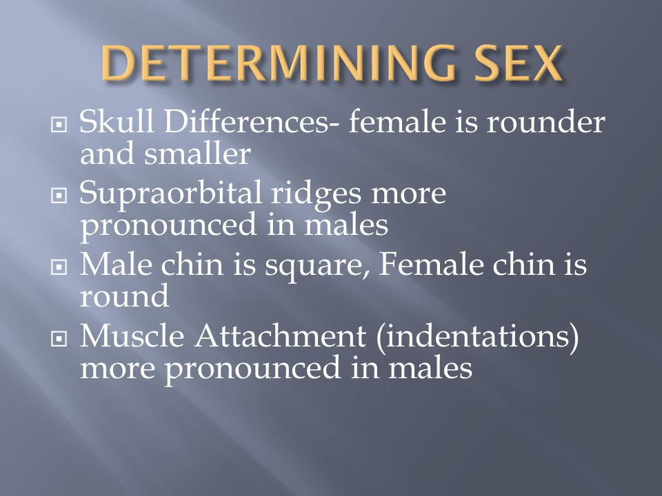 DETERMINING SEX Skull Differences- female is rounder and smaller