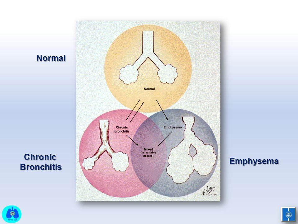 Normal Chronic Bronchitis Emphysema