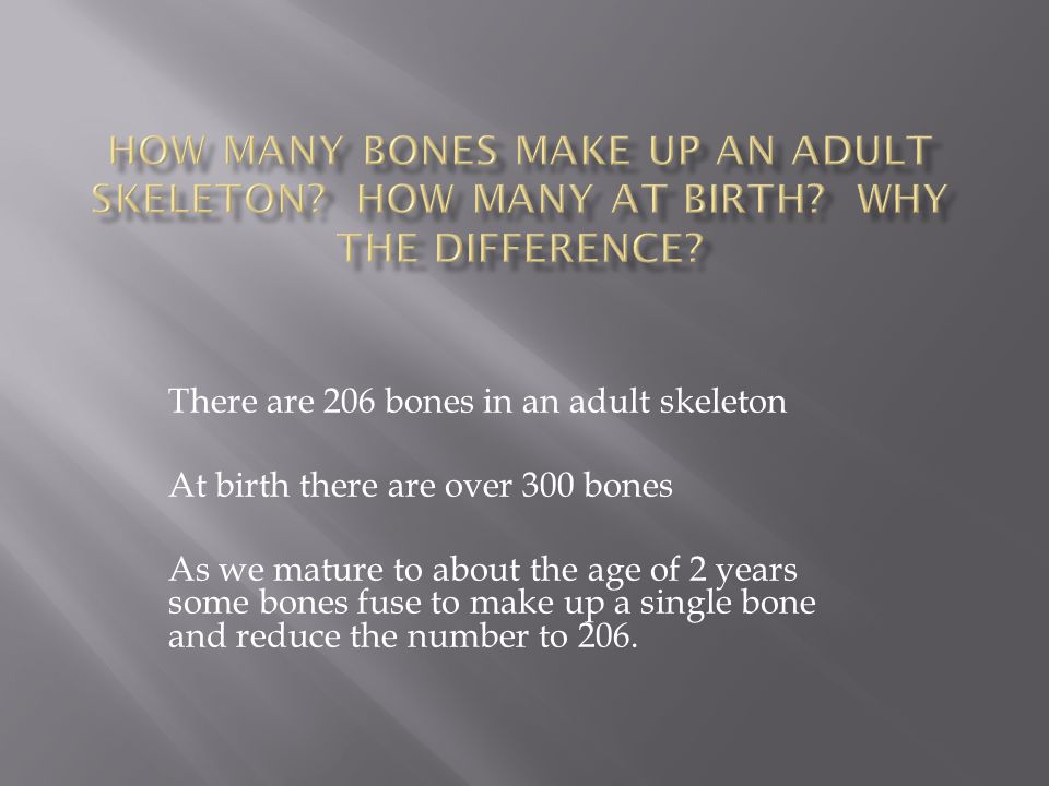 How many bones make up an adult skeleton. How many at birth