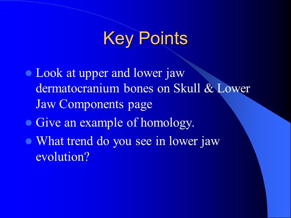 Key Points Look at upper and lower jaw dermatocranium bones on Skull & Lower Jaw Components page. Give an example of homology.