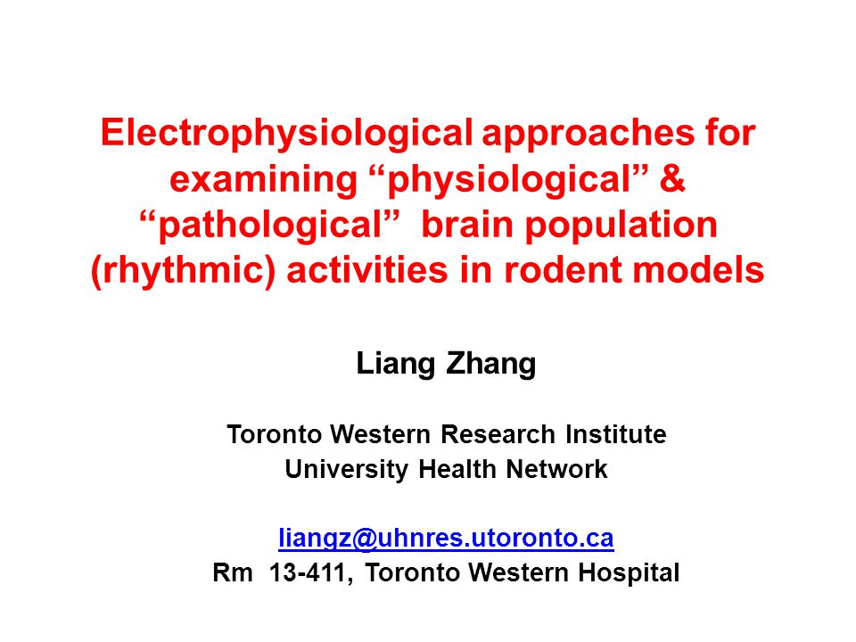 Electrophysiological approaches for examining physiological & pathological brain population (rhythmic) activities in rodent models