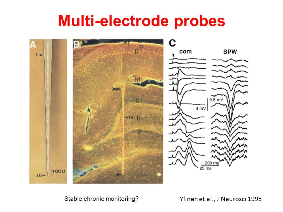 Multi-electrode probes