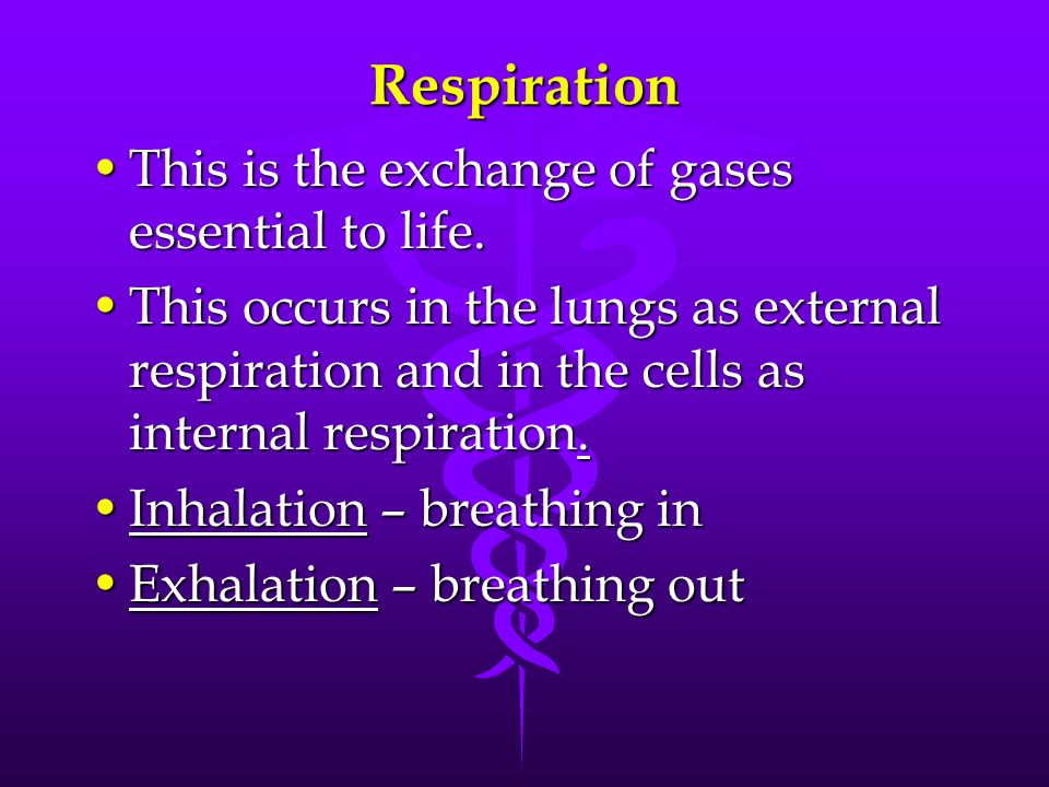 Respiration This is the exchange of gases essential to life.