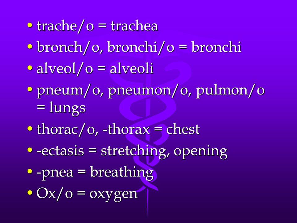 trache/o = trachea bronch/o, bronchi/o = bronchi. alveol/o = alveoli. pneum/o, pneumon/o, pulmon/o = lungs.