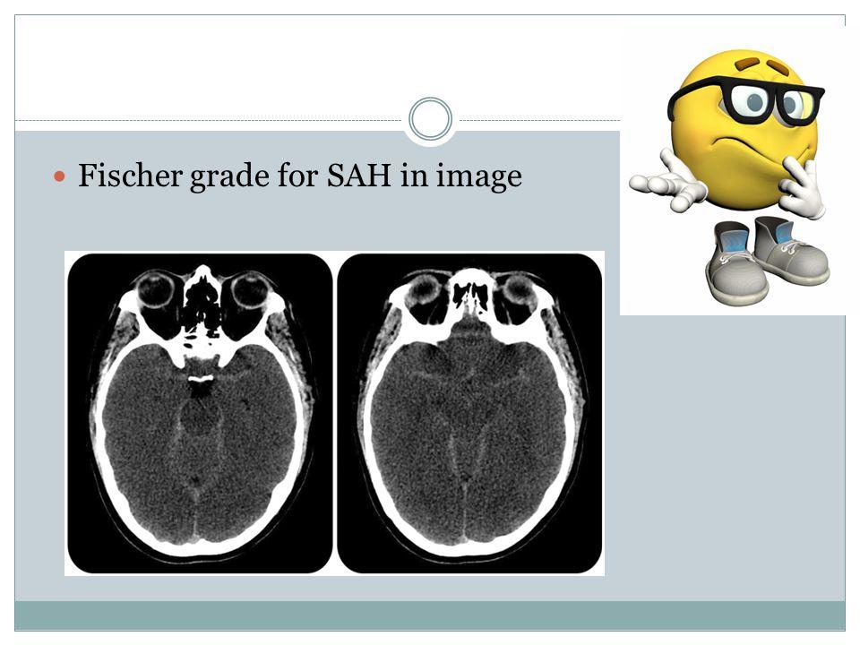 Fischer grade for SAH in image