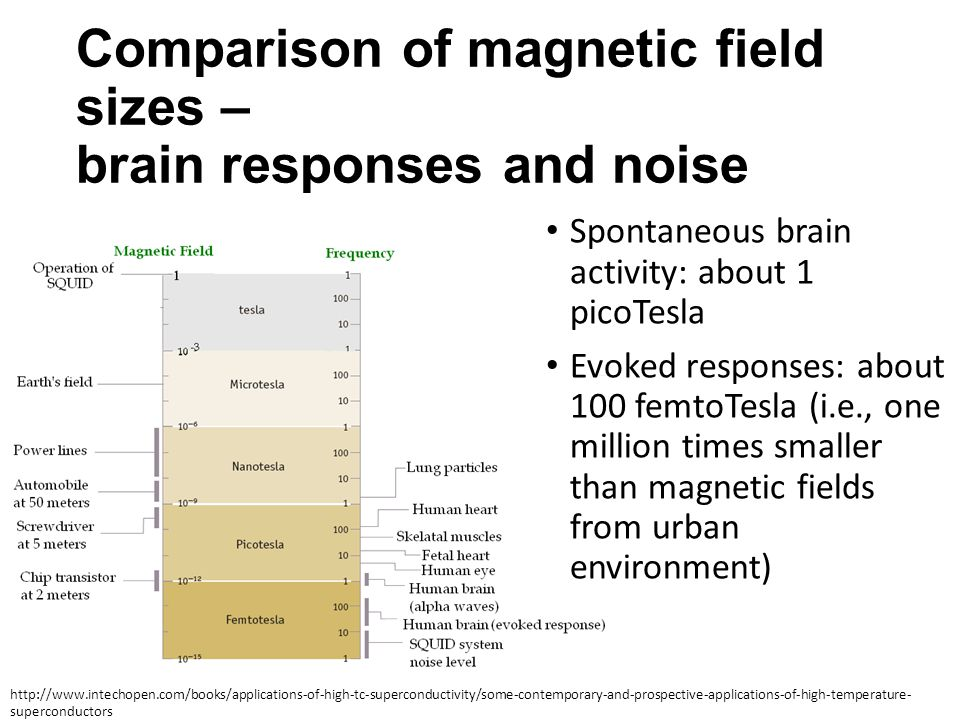 Comparison of magnetic field sizes – brain responses and noise