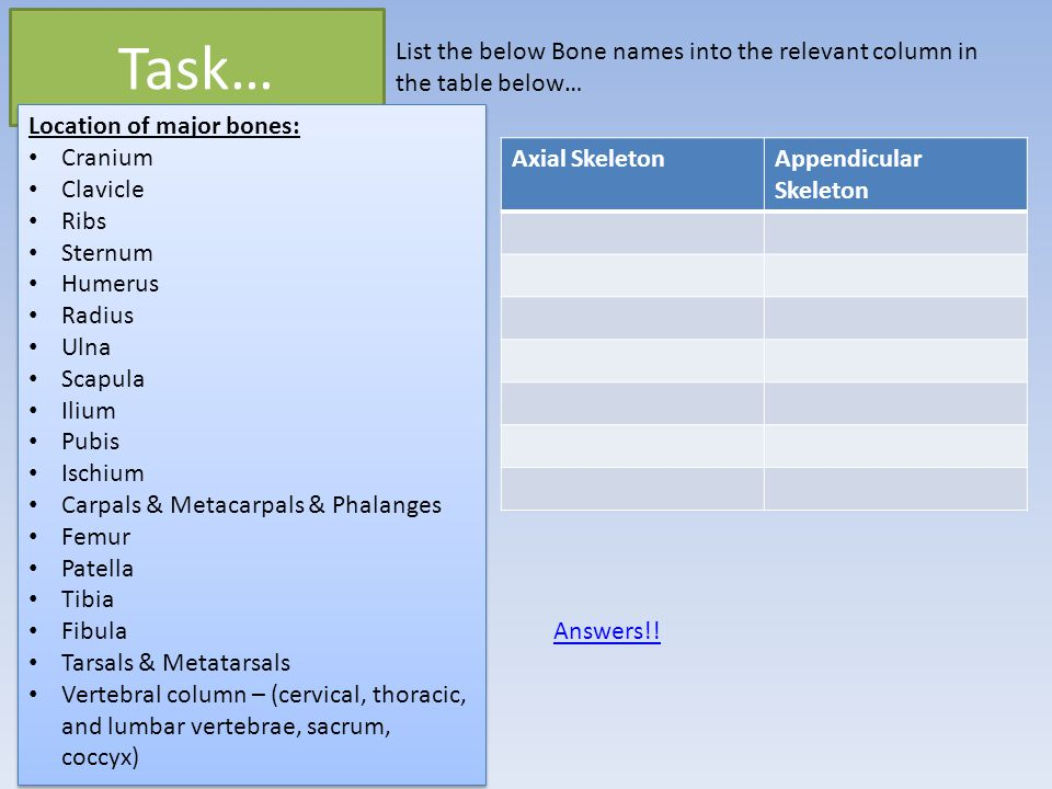 Task… List the below Bone names into the relevant column in the table below… Location of major bones: