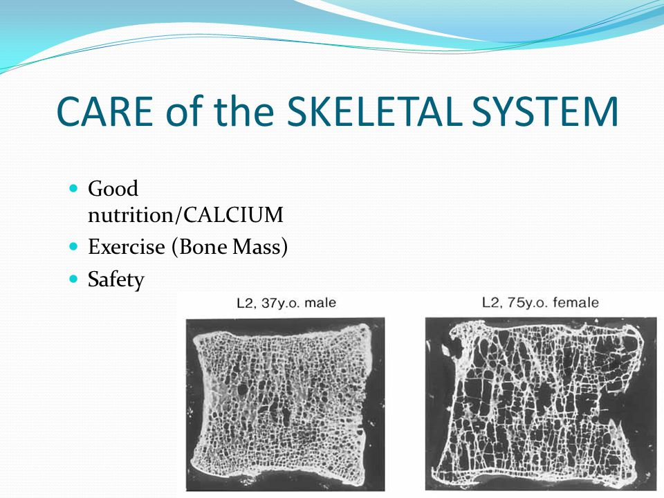 CARE of the SKELETAL SYSTEM