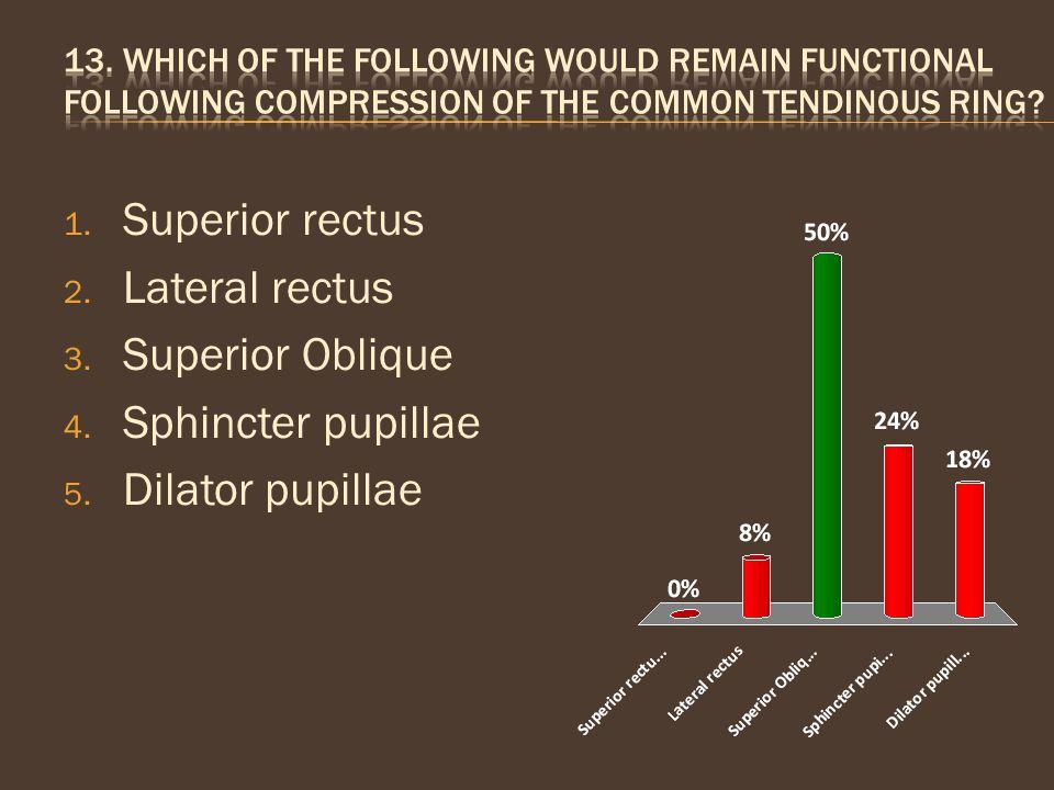 Superior rectus Lateral rectus Superior Oblique Sphincter pupillae