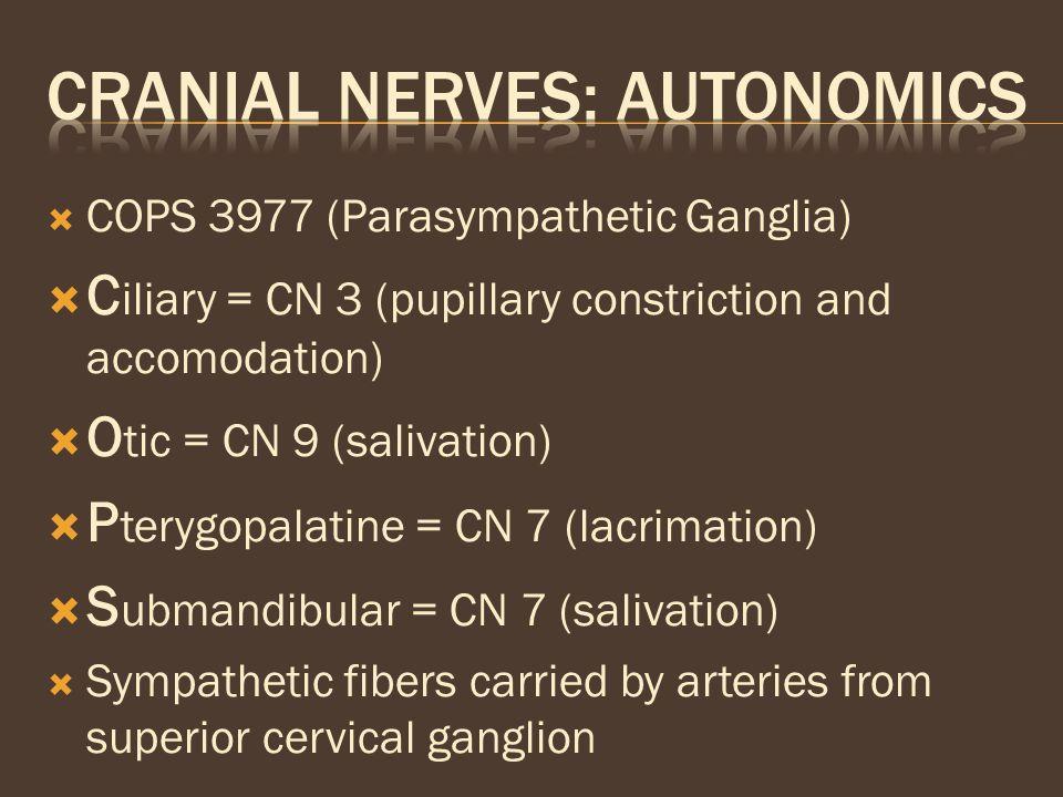 CRANIAL NERVES: AUTONOMICS