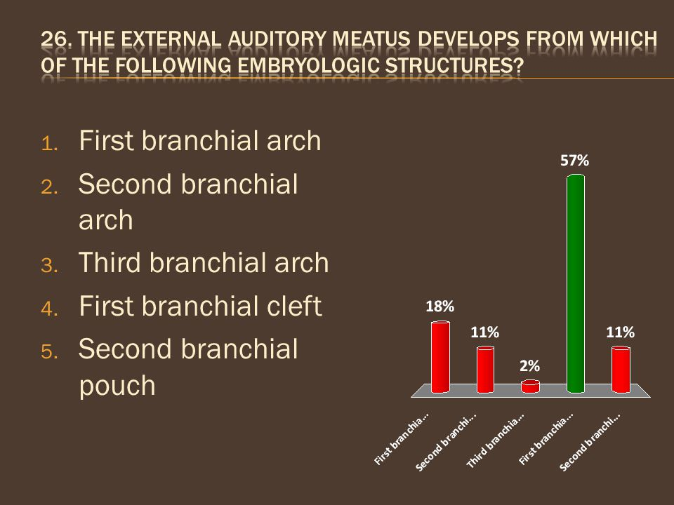 Second branchial pouch