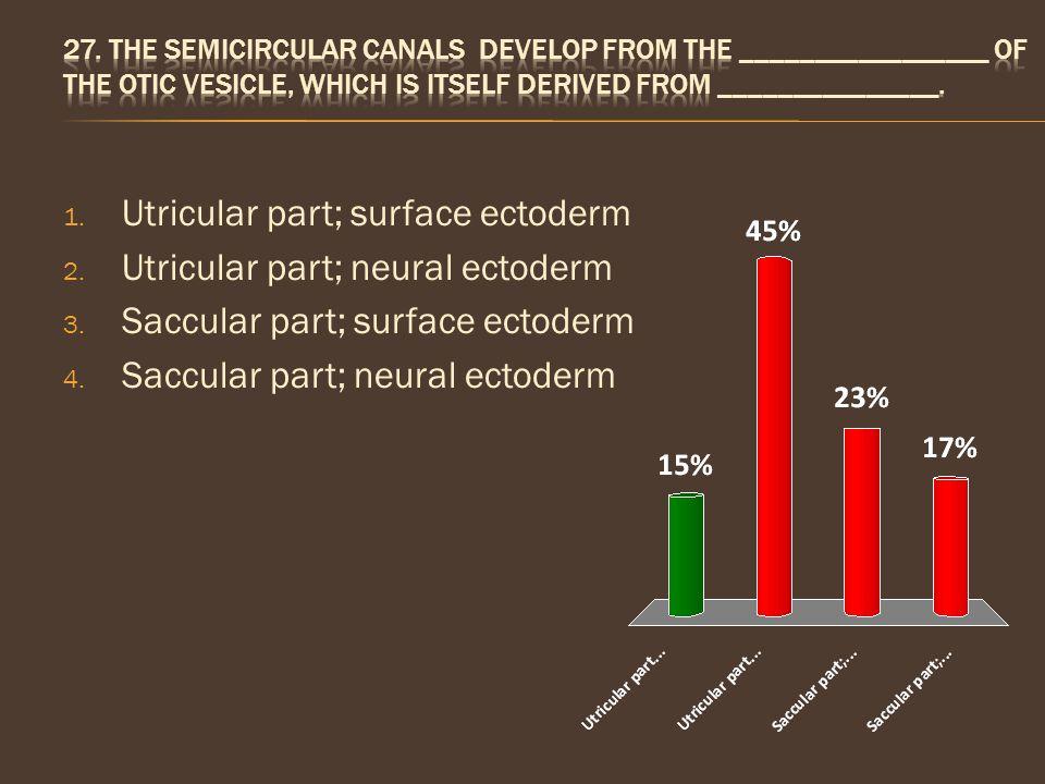 Utricular part; surface ectoderm Utricular part; neural ectoderm