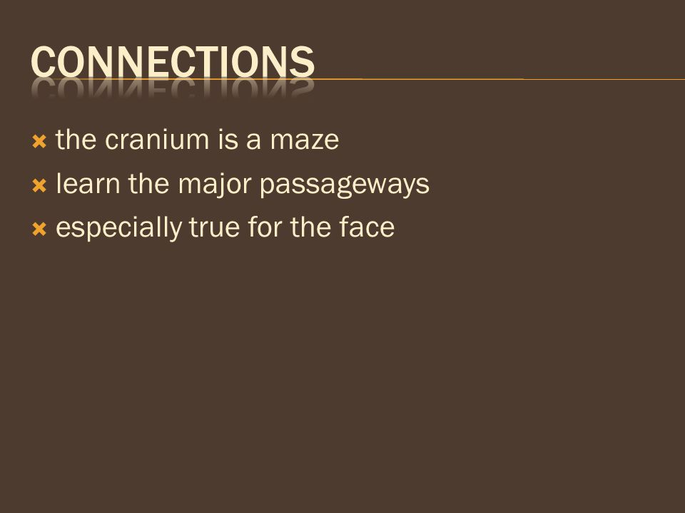 Connections the cranium is a maze learn the major passageways