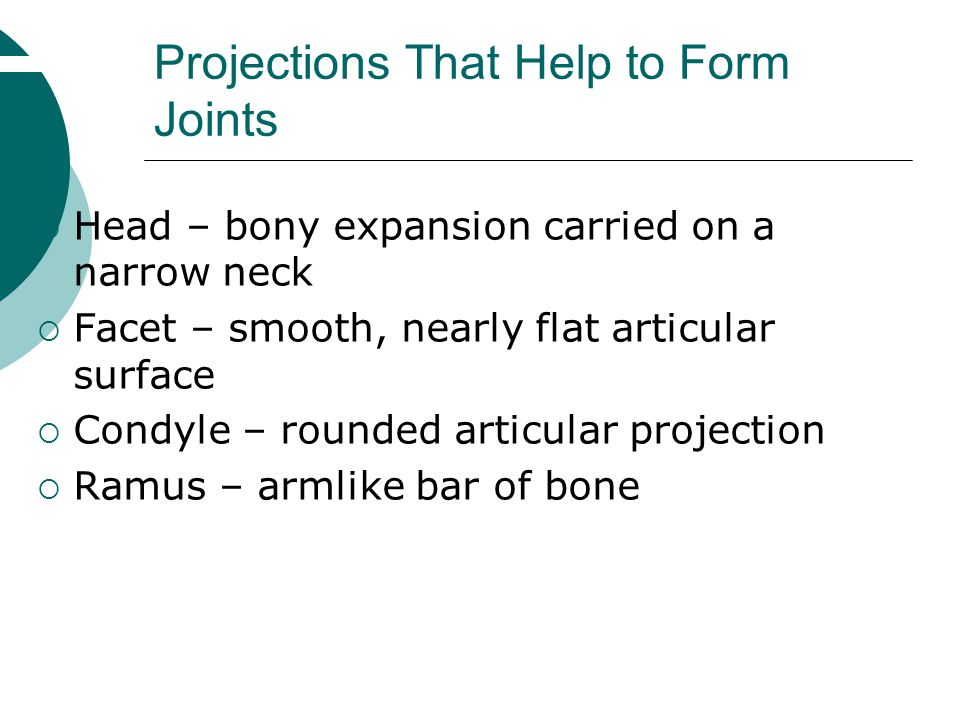 Projections That Help to Form Joints