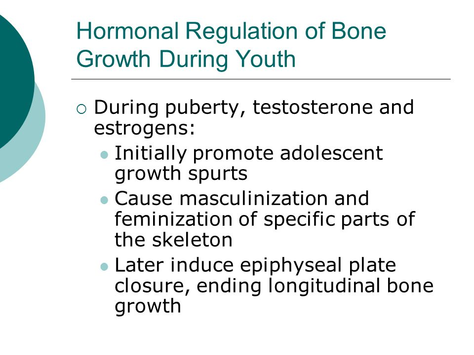 Hormonal Regulation of Bone Growth During Youth