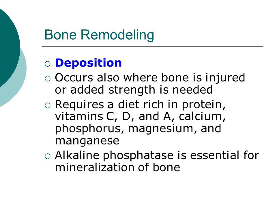 Bone Remodeling Deposition