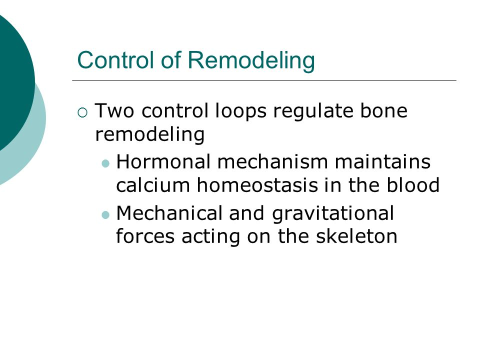 Control of Remodeling Two control loops regulate bone remodeling