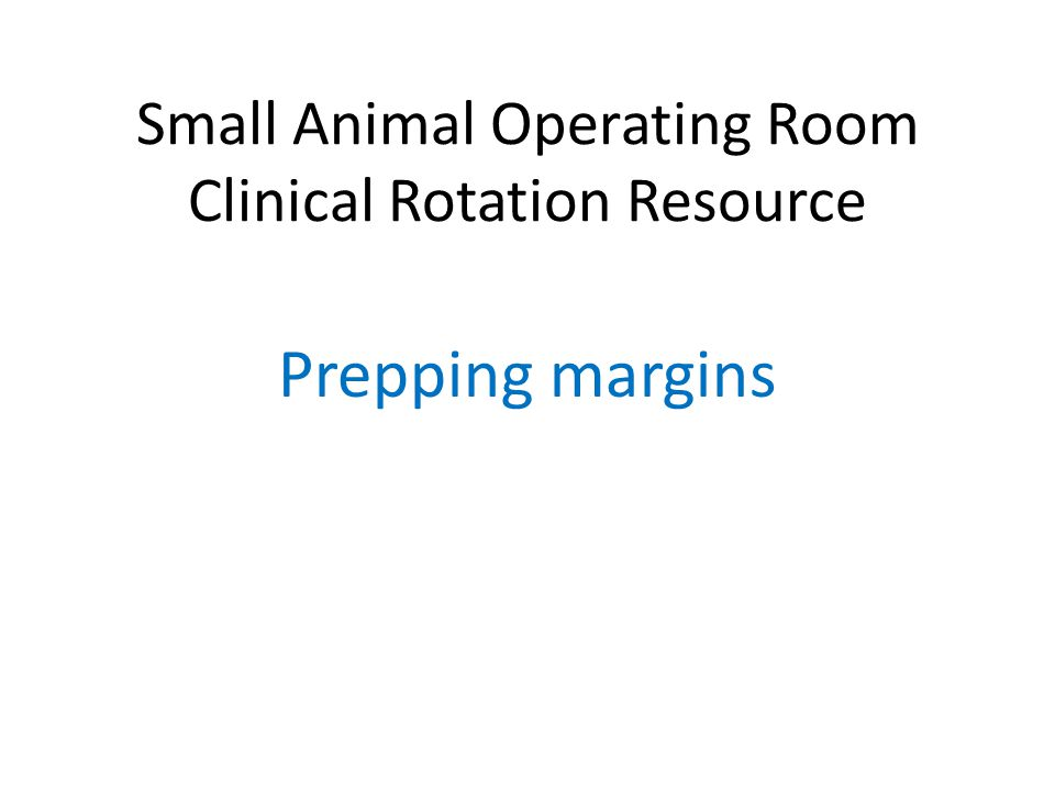 Small Animal Operating Room Clinical Rotation Resource
