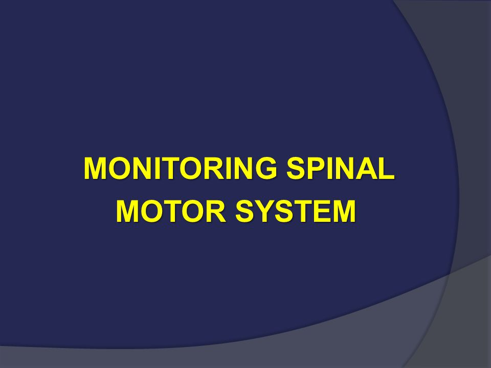 MONITORING SPINAL MOTOR SYSTEM