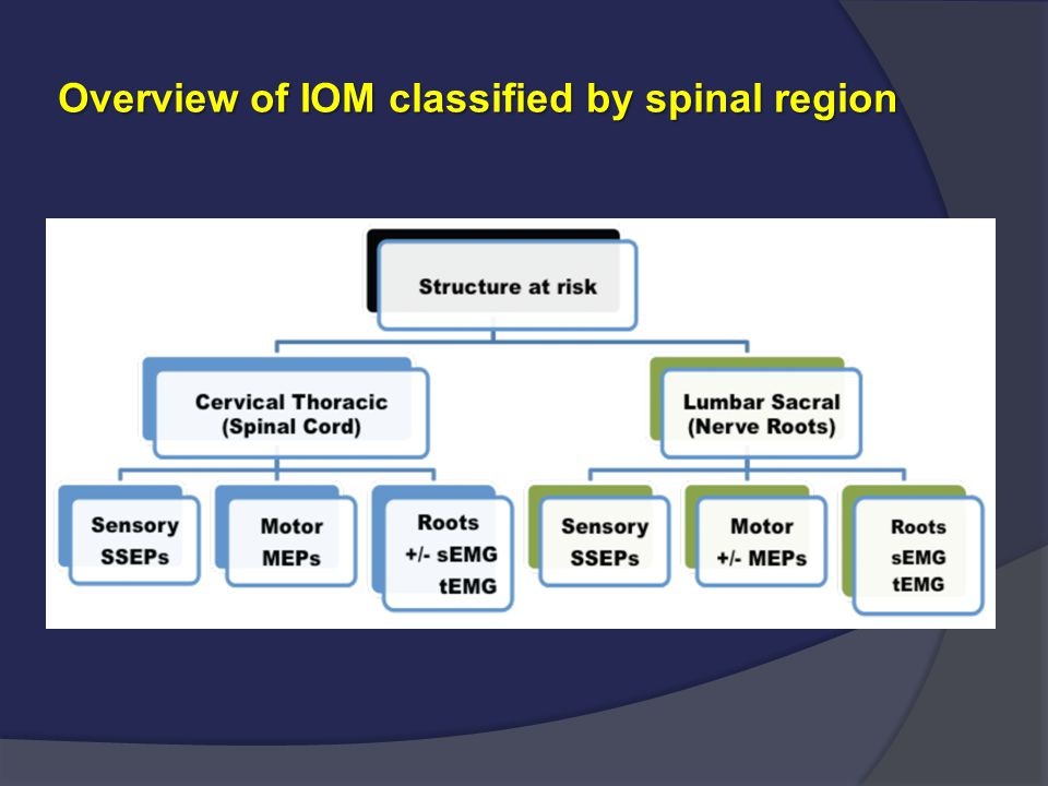 Overview of IOM classified by spinal region