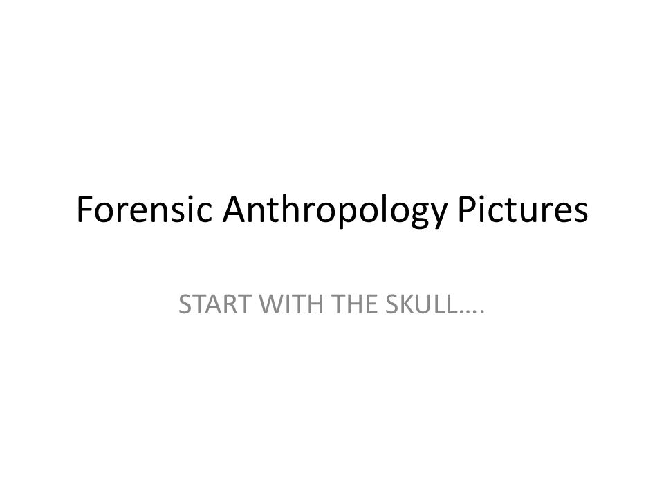 Forensic Anthropology Pictures