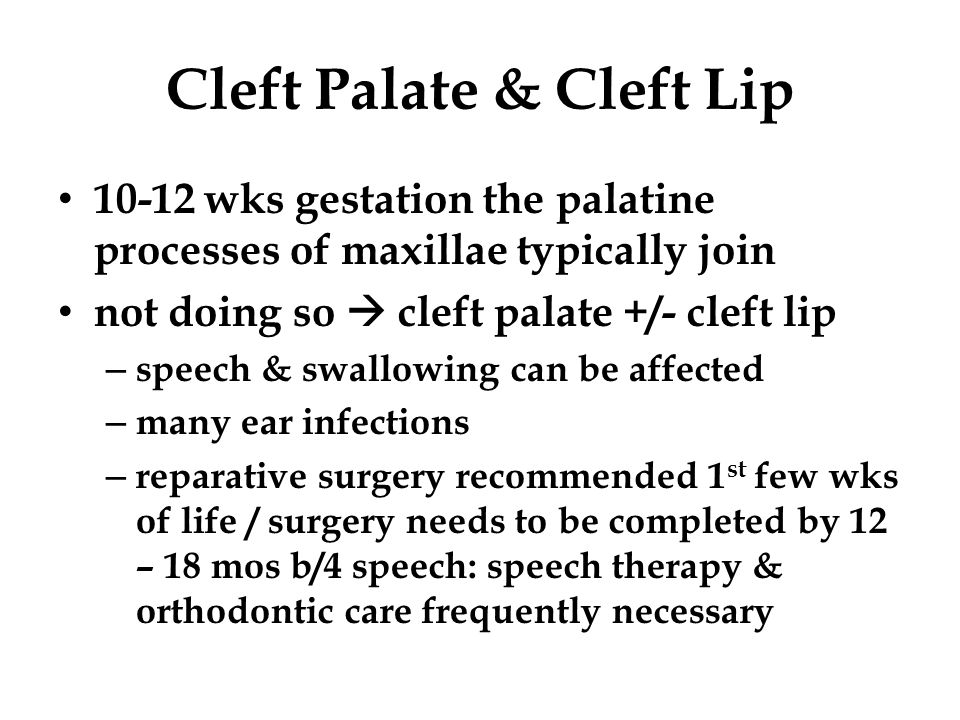 Cleft Palate & Cleft Lip