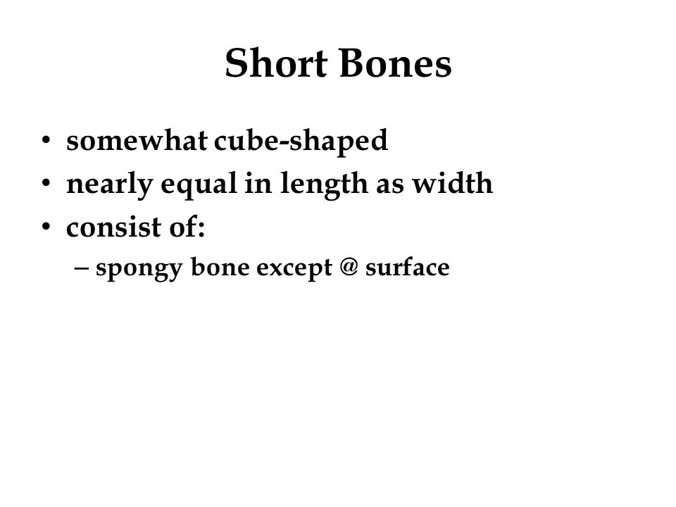 Short Bones somewhat cube-shaped nearly equal in length as width