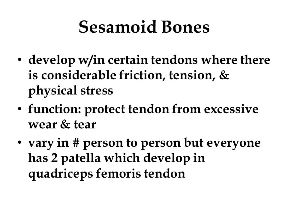 Sesamoid Bones develop w/in certain tendons where there is considerable friction, tension, & physical stress.