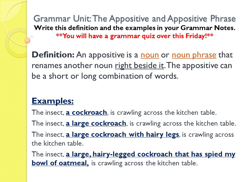 Grammar Unit: The Appositive and Appositive Phrase Write this definition and the examples in your Grammar Notes. **You will have a grammar quiz over this Friday!**
