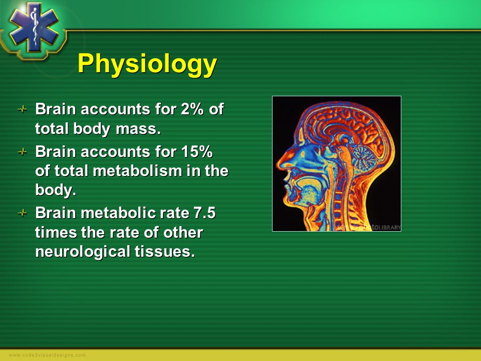 Physiology Brain accounts for 2% of total body mass.