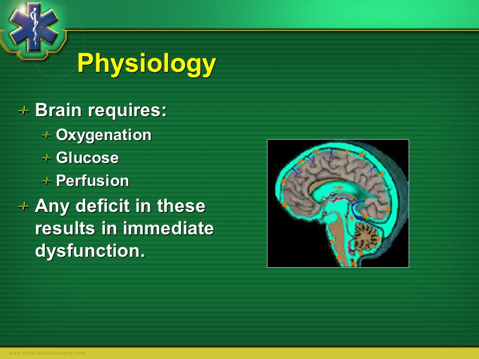 Physiology Brain requires: