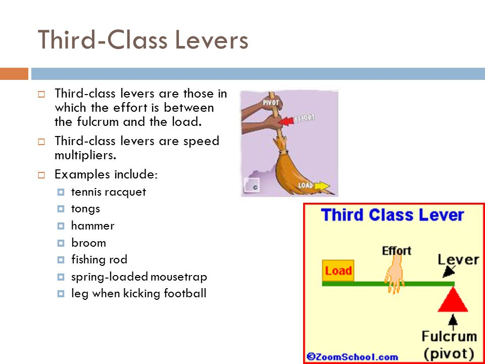 Third-Class Levers Third-class levers are those in which the effort is between the fulcrum and the load.