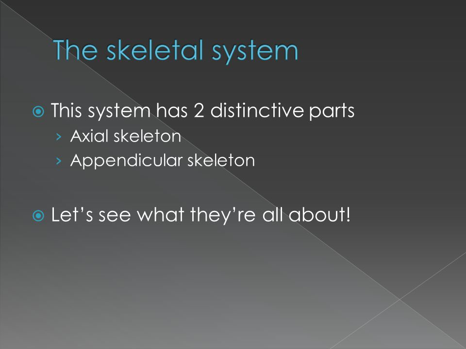 The skeletal system This system has 2 distinctive parts