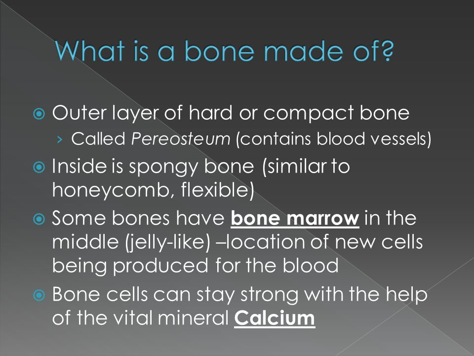 What is a bone made of Outer layer of hard or compact bone