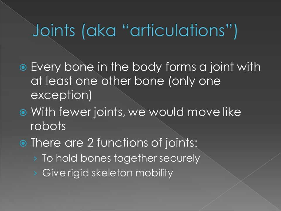 Joints (aka articulations )