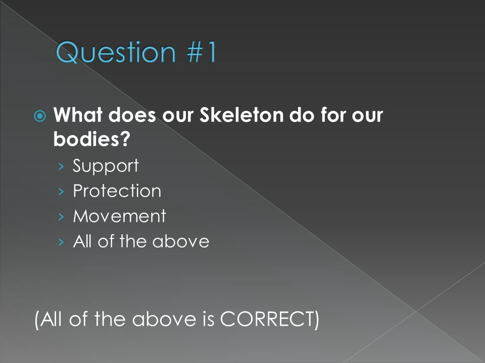 Question #1 What does our Skeleton do for our bodies