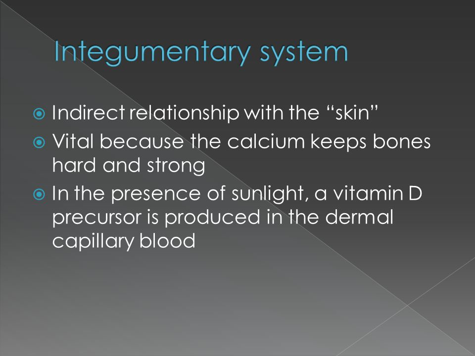 Integumentary system Indirect relationship with the skin