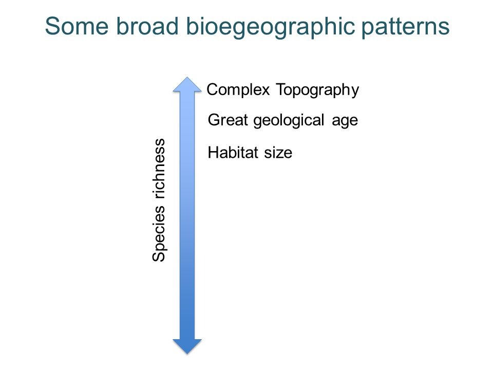 Some broad bioegeographic patterns