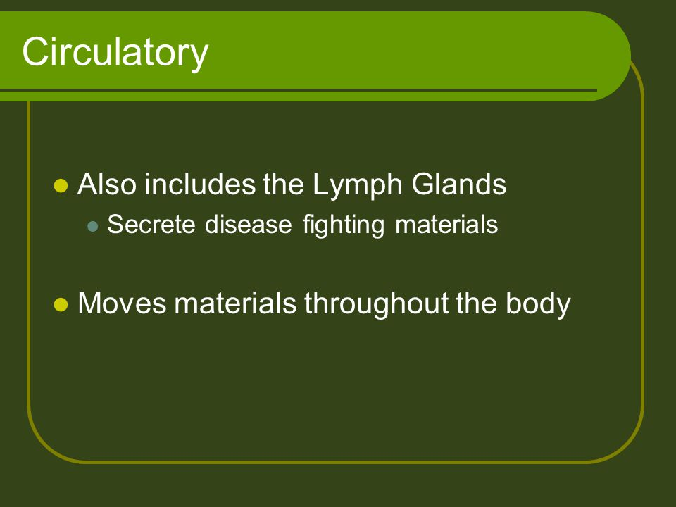 Circulatory Also includes the Lymph Glands