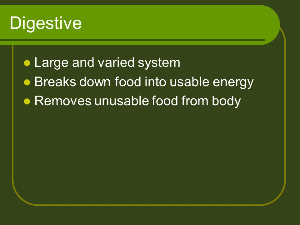 Digestive Large and varied system Breaks down food into usable energy