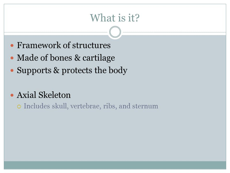What is it Framework of structures Made of bones & cartilage