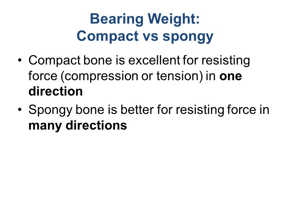 Bearing Weight: Compact vs spongy